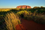 Uluru is waiting for sunset